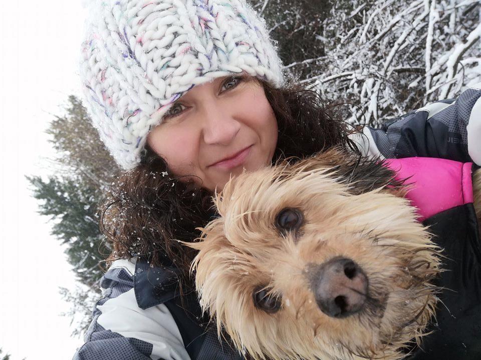 Sarah O'Neill Bansko Street Dogs